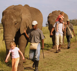 People walking with the elephants